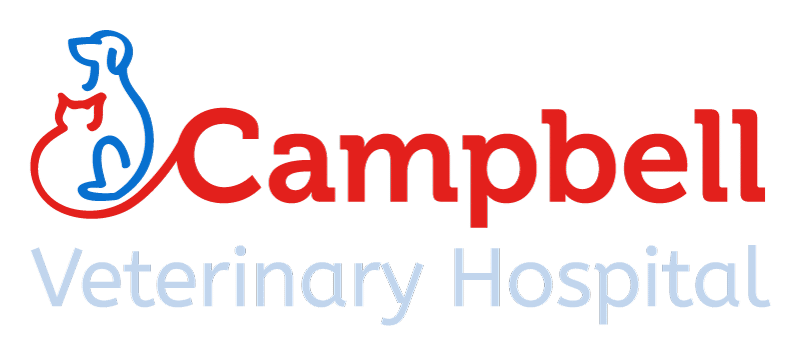 Campbell Veterinary Hospital